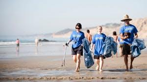 Beach Plogging the North Sea Coast