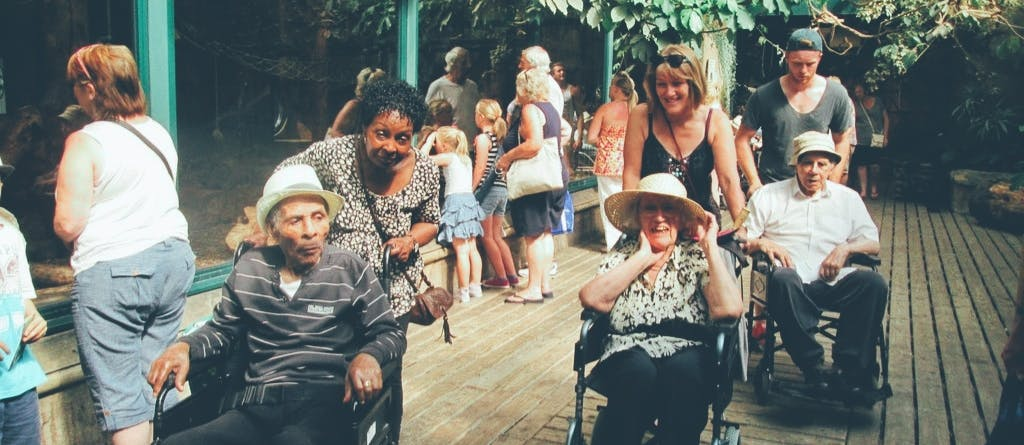 A Day At The Zoo with Elderly