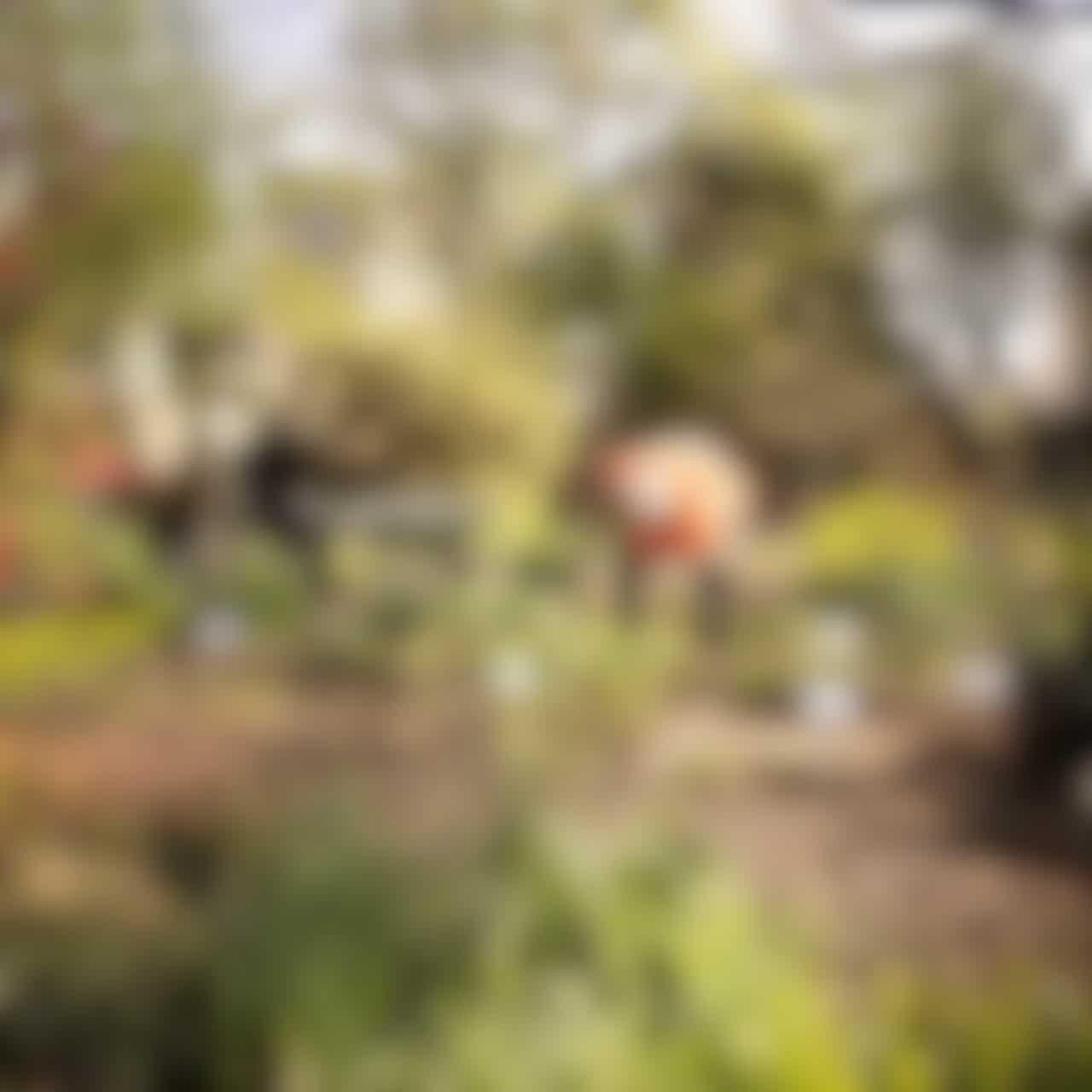 Groene Vingers? Kom helpen bij Botanische Tuin Afrikaanderwijk!