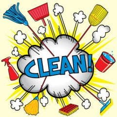 Grote schoonmaak