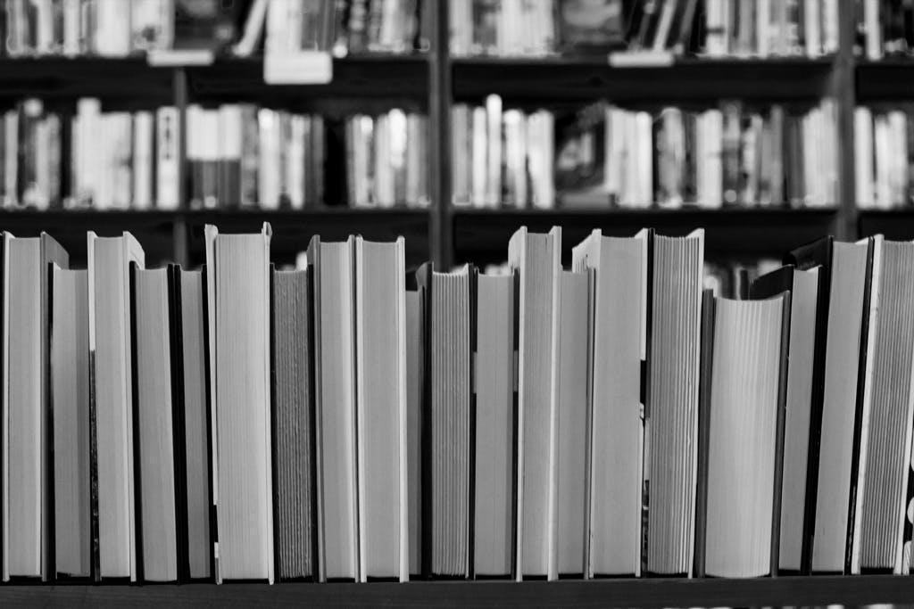 Voorlezer boeken in Grave