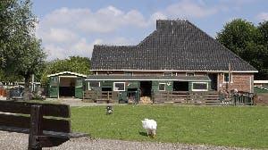Zet je met je team in bij de zorgboerderij van Cordaan!