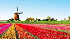 Een dagje uit in Amsterdam met Cordaan!