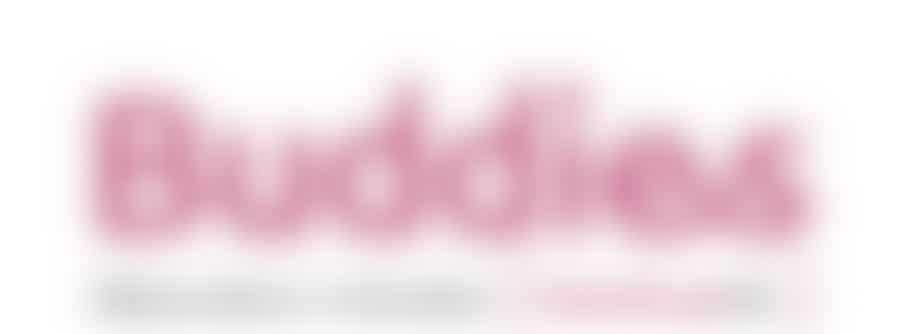 [Buddies] HandicapNL