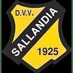 d.v.v. Sallandia