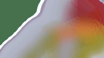 coronahulp laaggeletterden