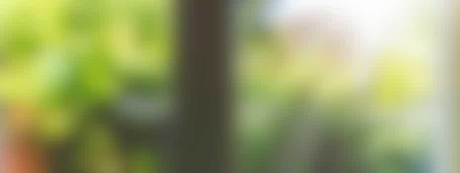 Onkruid wieden in Zuilen