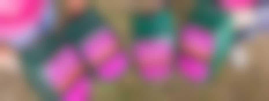 Hersenstichting zoekt collectanten voor collecteweek februari 2022