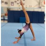 Funtastic Gymnastics