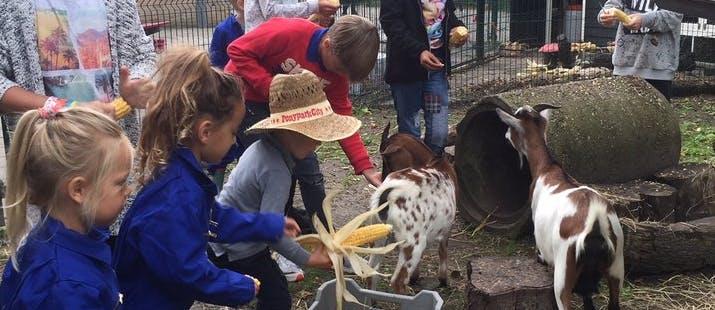 Miniboerderij Willem-Alexanderschool