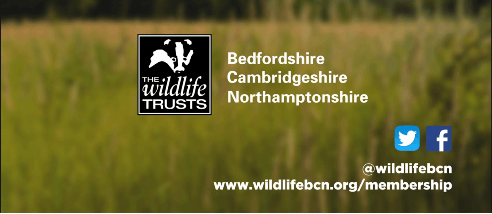 The Wildlife Trust BCN (South Cambs)
