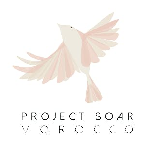 Project Soar