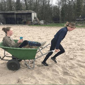 Holistische kindermanege Bosch en Vaart